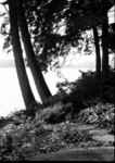 lake_house_b&w_1013.jpg