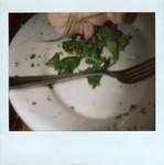 gill_lettuce_2.jpg